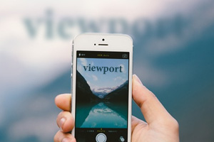 thumb_viewport