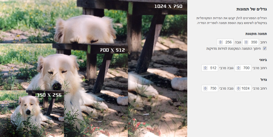 proportion-for-responsive-image